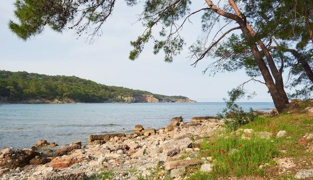 Панорамный вид на морское побережье. мир красоты. турция Бесплатные Фотографии