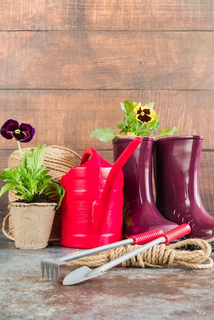 Pansy potted plant; watering can; gardening tools; rope; rubber boot against wooden wall Free Photo