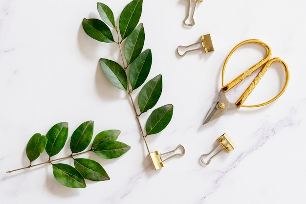 Paper clips with plants in flat lay Free Photo