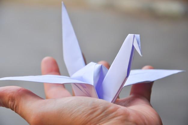 Paper crane's Premium Photo