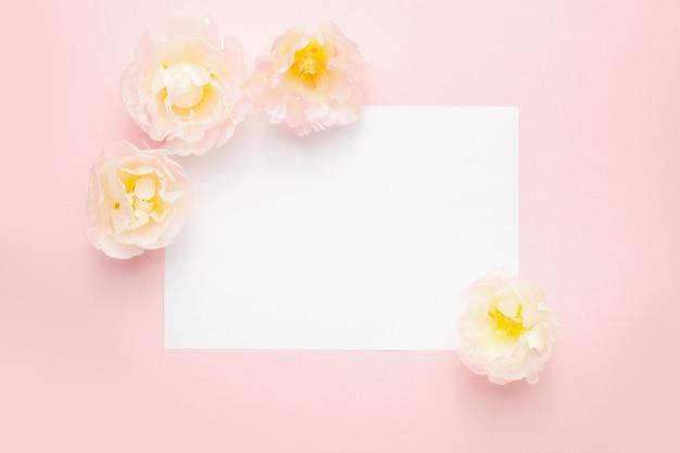 Paper, tulip flowers, pastel pink background Premium Photo