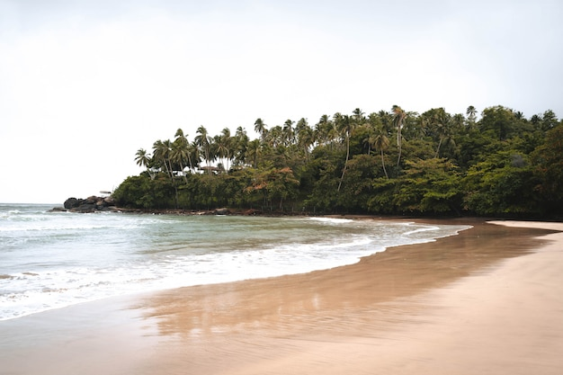 Paradise beach in the middle of the jungle in asia Premium Photo