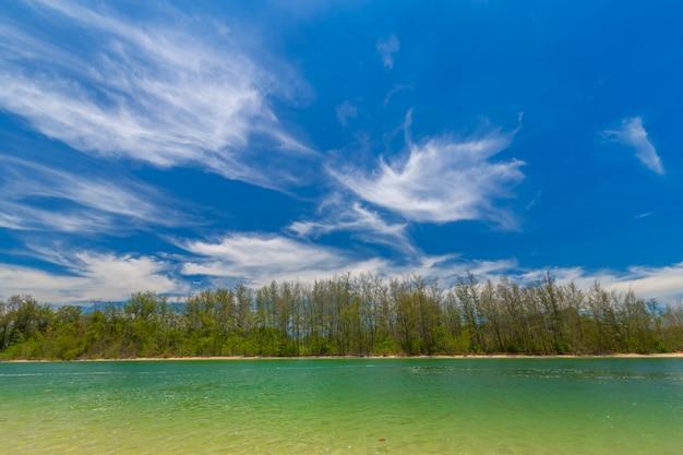 Paradise islandin krabi thailandの美しい砂浜のビーチと松の木の景色 Premium写真