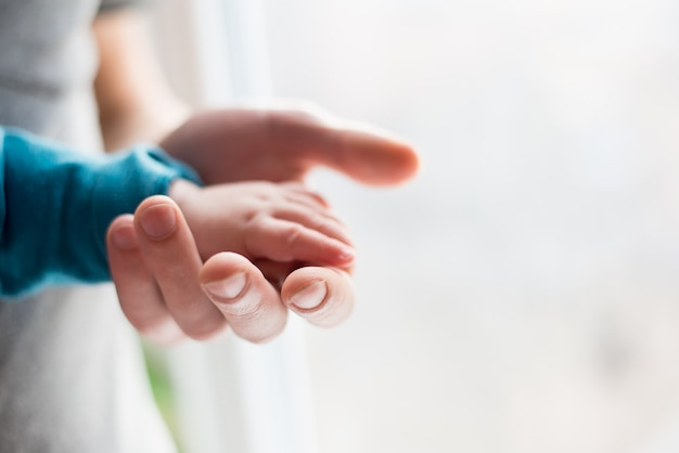 Parent holding in the hands hand of newborn baby Premium Photo