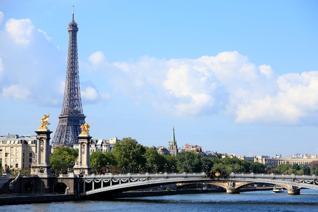 Paris eiffel tower with bridge Free Photo