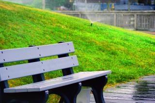 Park bench, nature Free Photo