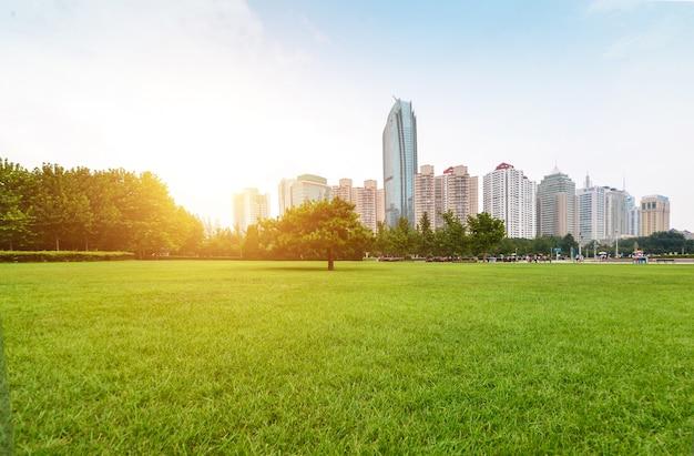 새벽에 도시 옆에있는 공원 무료 사진