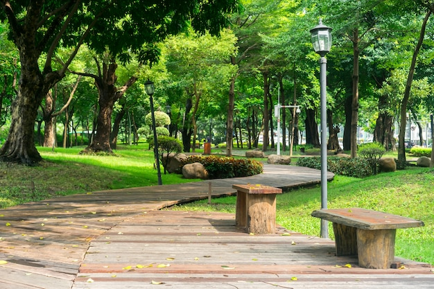 Park with a wooden pathway and benches Free Photo
