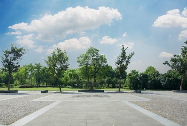 공원 무료 사진