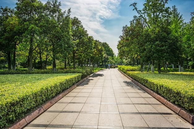 Park Free Photo