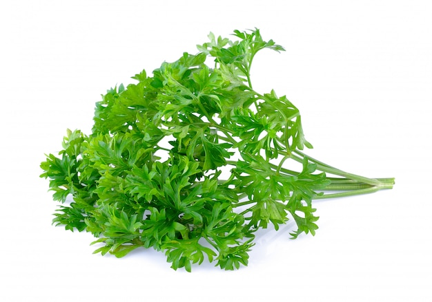 Parsley on white background Premium Photo