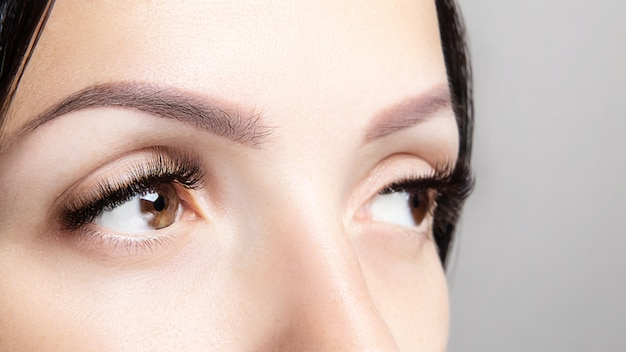 Part of woman's face with long brown eyelashes and microblading. female beauty portrait. eyelash extensions, brow care, beauty and spa concept Premium Photo