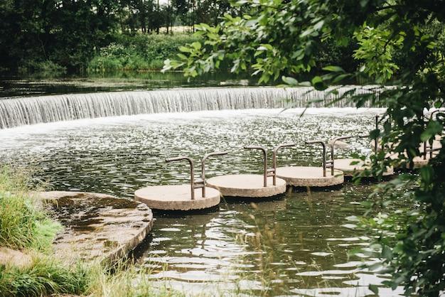 Pasig beautiful green forest, bridge and a waterfall Premium Photo