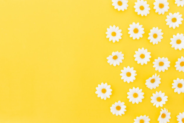 Pattern of daysies on yellow background with space to the left Free Photo