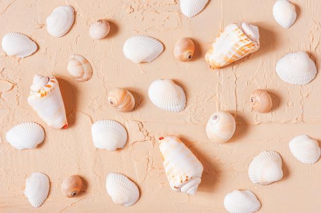 Pattern of seashells Premium Photo