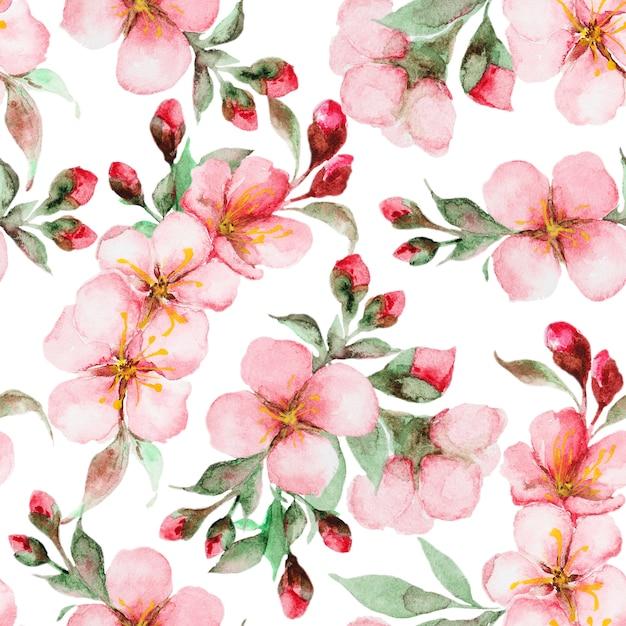 Pattern of watercolor sakura flowers Premium Photo