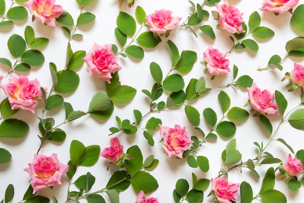 Pattern with plant branches and rose buds Premium Photo