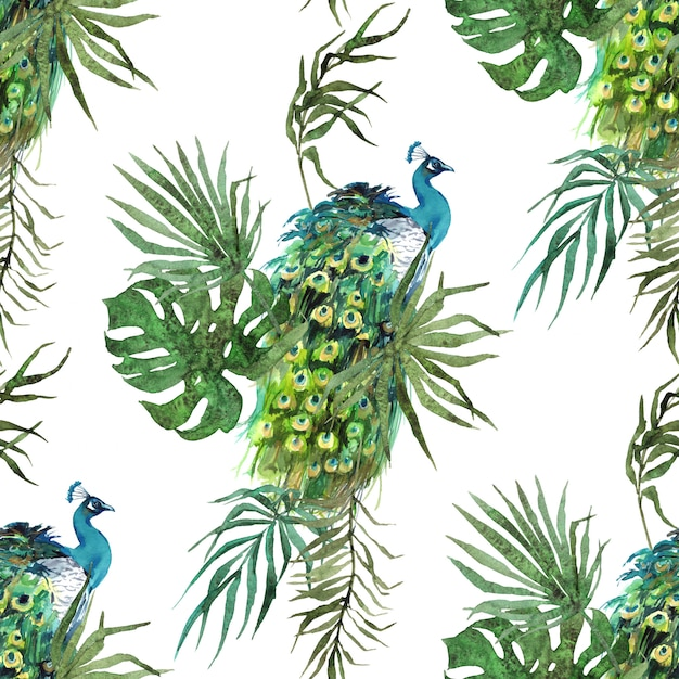 Peacock feathers and tropical leaves watercolor pattern Premium Photo