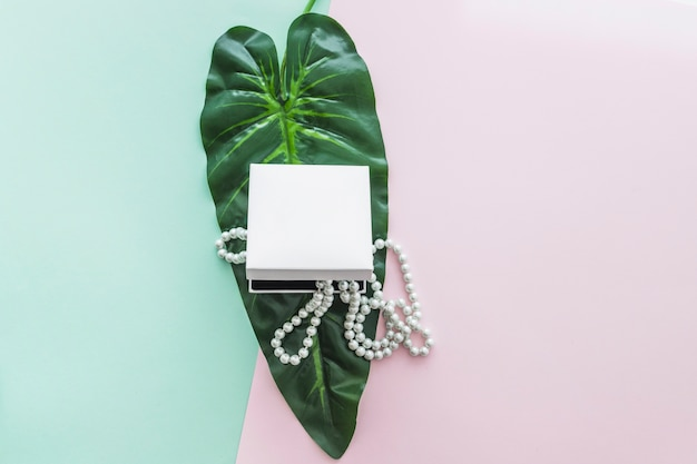 Pearls necklace in the box on green leaf over the pastel backdrop Free Photo