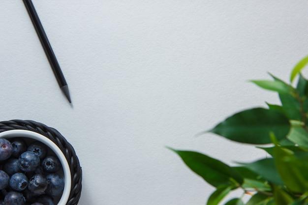 Карандаш с черникой, вид сверху растений на белом фоне пространства для текста Бесплатные Фотографии