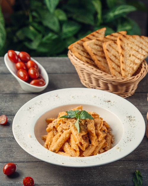Penne pasta in tomato sauce served with toast bread. Free Photo