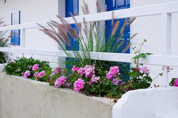トルコの白い家の近くのpennisetum setaceumとpelargonium zonale。 Premium写真
