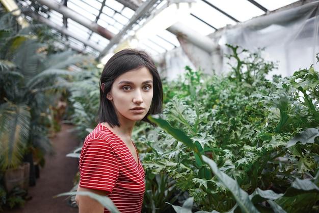 人、植物学、農業、園芸、ガーデニングのコンセプト。エキゾチックな植物や花の世話をし、植物の苗床で働くカジュアルなドレスを着ている美しい若い女性農家のクロップドショット 無料写真