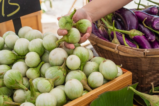 People buy fresh eggplant in local market - customer in vegetables market concept Free Photo