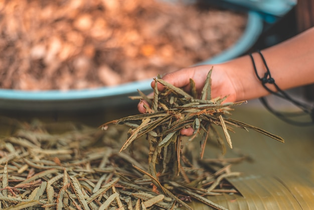 People hand holding raw materials for cooking Premium Photo