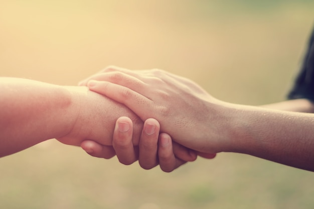 People old and young hand holding with sunset background Premium Photo