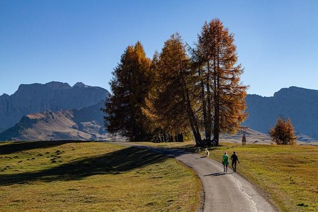 ドロミテ、イタリアの芝生のフィールドの真ん中に道を歩いている人 無料写真