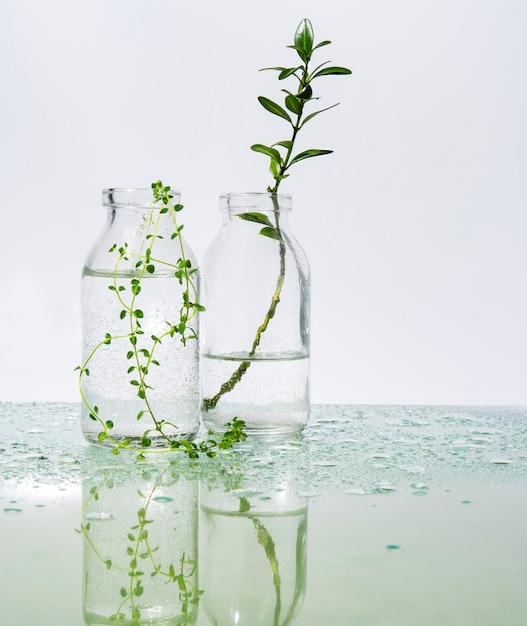 Парфюмированная вода и травы на зеркальном столе Premium Фотографии