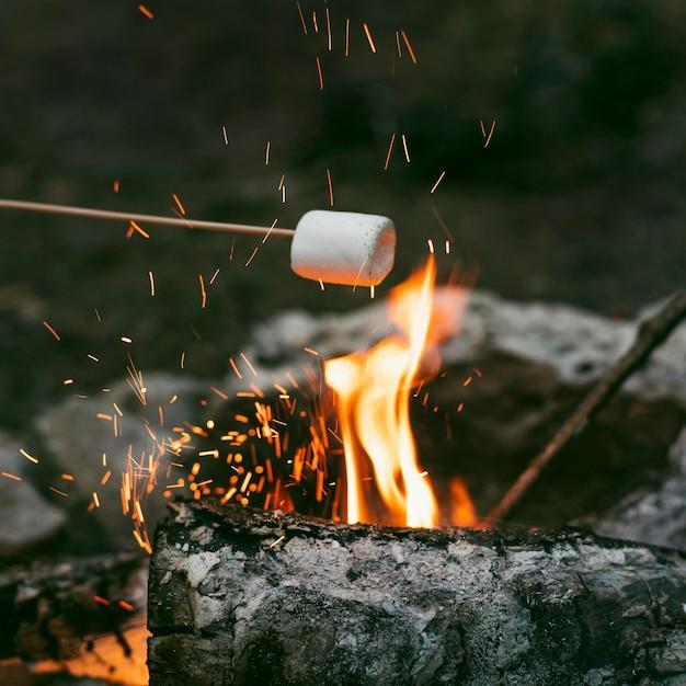 Persona che brucia marshmallow nel fuoco da campo Foto Gratuite