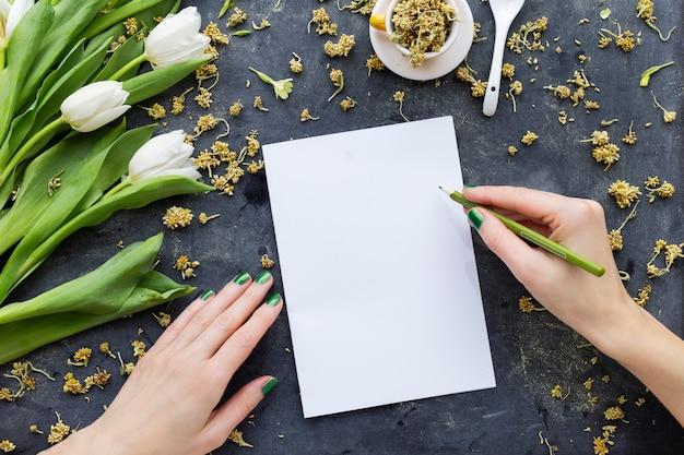白いチューリップの近くの緑の鉛筆で白い紙に描く人 無料写真
