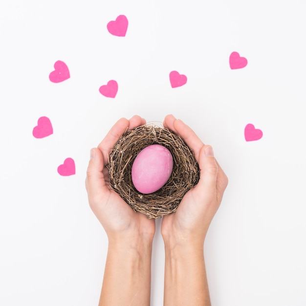 Person holding nest with bright easter egg Free Photo