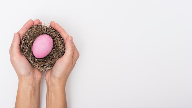 Person holding nest with pink easter egg Free Photo