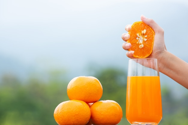 Person holding an orange fruit in her hand and squeezing it in a jar Free Photo