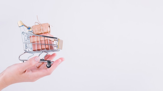 Person holding small grocery cart with gift boxes Free Photo