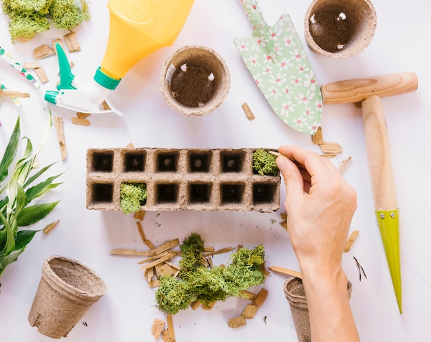 Person's hand putting moss on peat pot with gardening tools on white background Free Photo