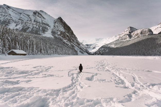 Person in snowy valley in mountains Free Photo