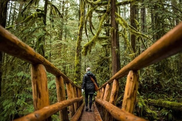 Человек идет по узкому деревянному мосту среди мшистого леса Бесплатные Фотографии