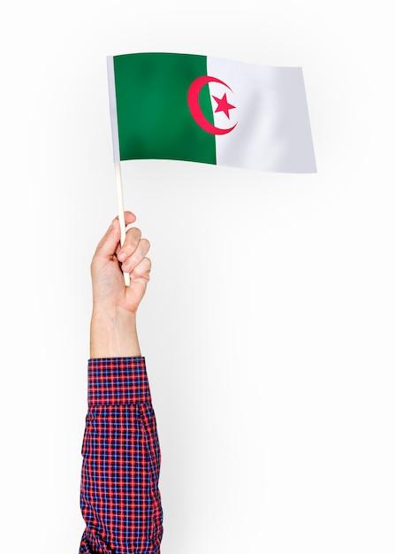 Person waving the flag of people's democratic republic of algeria Free Photo