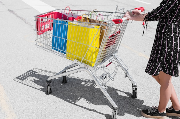 Person with a shopping cart Free Photo