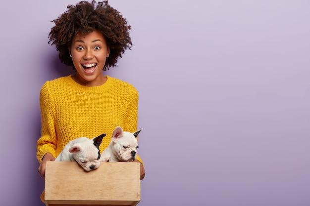 애완 동물 관리 개념. 즐거운 어두운 피부를 가진 여성 주인은 작은 나무 상자에 강아지를 안고 오른손으로 줄 준비가되어 있으며 개 가족 성장을 기뻐하며 노란색 스웨터를 입습니다. 무료 사진