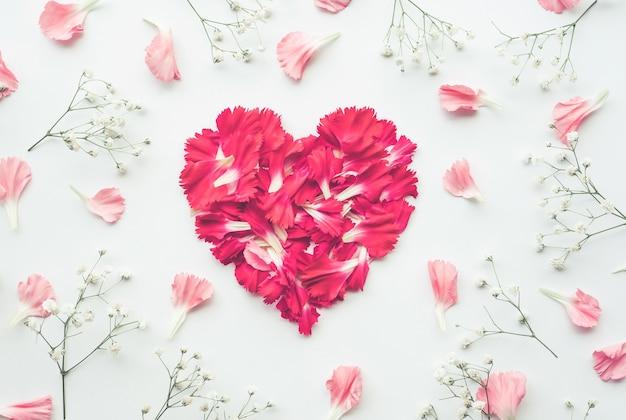 Лепесток цветка на белом фоне Premium Фотографии
