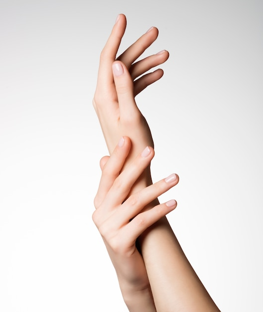 Photo of a beautiful elegant female hands with healthy clean skin Free Photo