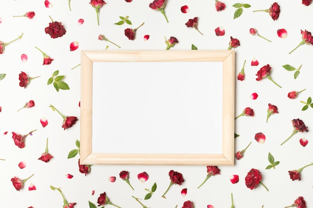 Photo frame between composition of wonderful red flowers and green leaves Free Photo
