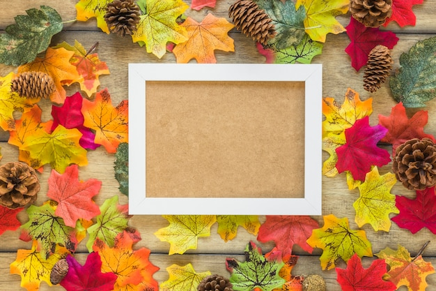 Photo frame between foliage and snags Free Photo