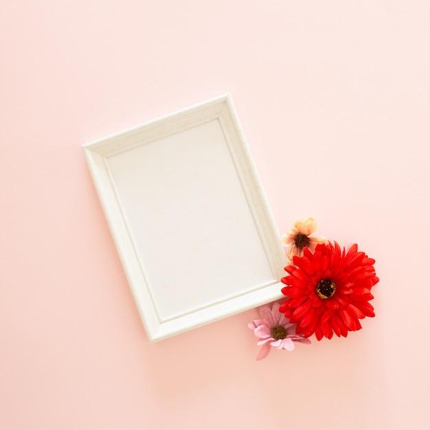 Photo frame and gerbera flower Free Photo