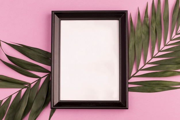 Photo frame and plant branches Free Photo